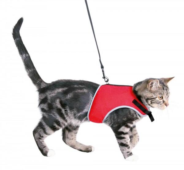 Trixie Softgeschirr mit Leine 1,20m Katze