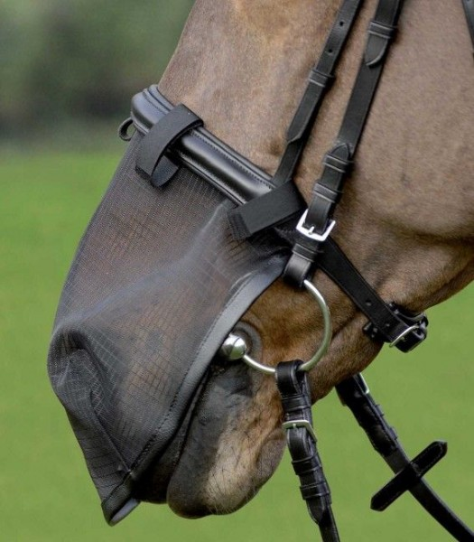 Fliegennasenschutz Pony schwarz